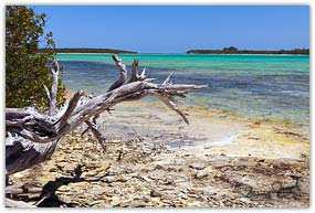 Half Sound Bay Eleuthera