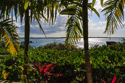 Harbour Island Bay