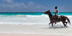 Horseback on Pink Sands Beach